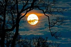 Full moon rise in Scott County, KY by amparo
