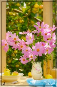 """Photo from album """"букеты"""" on Yandex. Pink Flowers, Good Morning, Cool Photos, Bouquet, Seasons, Table Decorations, Plants, Cards, Design"""