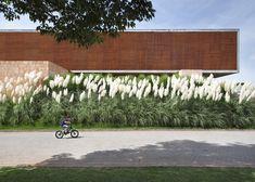 pampas greens in front of BT House by Studio Guilherme Torres | #saltstudionyc @Salt Studio NYC