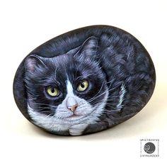 gatti dipinti su pietra