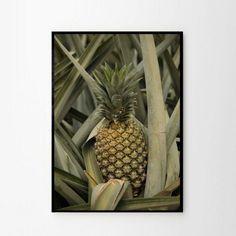 Foto plakat - Ananas