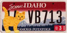 I uploaded new artwork to fineartamerica.com! - 'Idaho License Plate' - http://fineartamerica.com/featured/idaho-license-plate-lanjee-chee.html via @fineartamerica