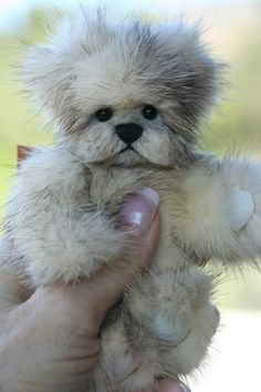 Truffles Mink Bear by Kimbearlys Originals - How cute!!!