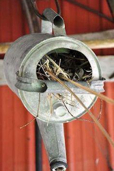 Ten Amazing Bird Houses All Made From Upcycling and Recycling Bird House Feeder, Bird Feeders, Bird Nests, Garden Crafts, Garden Projects, Fun Projects, Diy Garden, Easy Bird, Bird House Kits