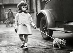 Young exhibitor walks her kitten on a leash at the National Cat Club Show at Crystal Palace, London (December 2, 1931). [1280 x 939]