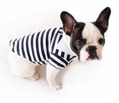www.criminalpuppy.com