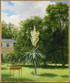 Antoine Chazal (French,  1793-1854)  Yucca gloriosa blooming in 1844 in Neuilly Park (Le Yucca gloriosa fleuri en 1844 dans le parc de Neuilly), 1845  Paris, Musée du Louvre, France