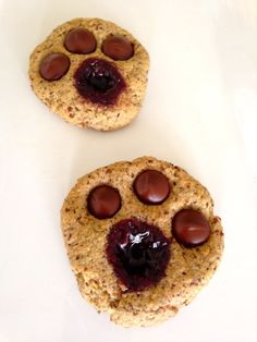 Whole-Grain Snack: Animal Tracks Cookies -- fun to make and eat! Perfect for children. NO sugar (only maple syrup), and has lots of whole grains. My kids LOVE them! Jungle Snacks, Animal Snacks, Thumbprint Cookies Recipe, Fun Cookies, Cute Food, Good Food, Class Snacks, Preschool Snacks, Easter Activities