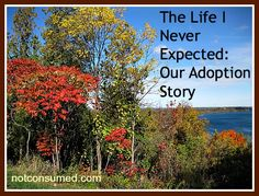Sharla shares how through adoption they went from a family of 4 to a family of 9.