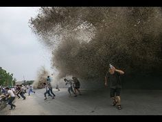 6 FREAK WAVES That Caught People Off-Guard