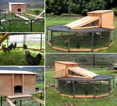 Chicken Coop - - chicken coop from an old trampoline! Here's a link to where it was featured with more pics! Building a chicken coop does not have to be tricky nor does it have to set you back a ton of scratch. Backyard Chicken Coop Plans, Portable Chicken Coop, Building A Chicken Coop, Chickens Backyard, Chicken Coop Pallets, Old Trampoline, Backyard Trampoline, Trampoline Ideas, Backyard Toys