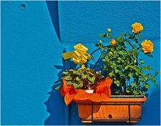The colors of Burano - Venice 4 by Werner Stauß on 500px