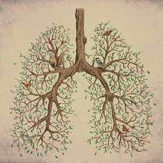 Lungs. Life.