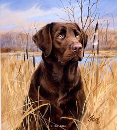 Thats My Dog, Too! Chocolate Lab br Signed Edition-13 x 15
