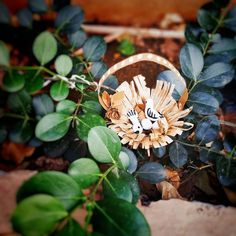 """""""Create with heart; build with the mind."""" Creating something gives you pleasure always. Made this small nest in a basket with travel… Nest, Basket, Paper Crafts, Mindfulness, Create, Travel, Instagram, Viajes, Paper Craft Work"""