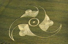 Photos Crazy Crop Circles Chicago Tribune - Are These Bizarre Patterns Made By Humans Flattening Crops Or Something Else Paranormal, Crop Circles, Aliens And Ufos, Ancient Aliens, Circle Art, Circle Design, Alien Art, Flower Of Life, Land Art