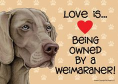 Such a special breed <3