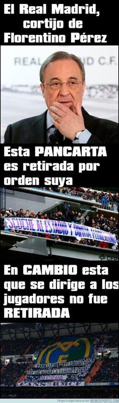 816453 - El Real Madrid, cortijo de Florentino Pérez