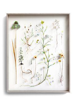 Flower construction #68 (w:80 h:100 d:6.5 cm)