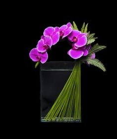 A collection of beautifully arranged fresh flowers Orchid Flower Arrangements, Creative Flower Arrangements, Orchid Centerpieces, Orchidaceae, Pink Orchids, Arte Floral, Exotic Flowers, Planting Flowers, Flowering Plants