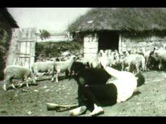 Divlje seme (1967) domaci film - http://filmovi.ritmovi.com/divlje-seme-1967-domaci-film/
