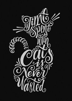 Cat Lover quote typography lettering by Konstantine Studio Crazy Cat Lady, Crazy Cats, I Love Cats, Cool Cats, Cat Quotes, Cat Sayings, All About Cats, Cat Crafts, Typography Quotes