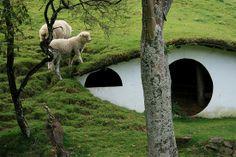 oh my! underground barn