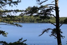 Great Pond - Wellfleet Real Estate - Great Pond Homes For Sale