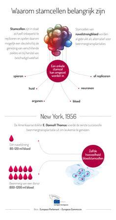 Stamcellen: vrije donatie is van levensbelang