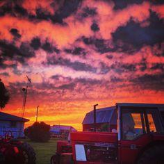 Beautiful farm sunset!