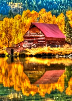 New Wonderful Photos: Fall Yall Great