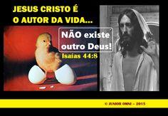 JESUS - O AUTOR DA VIDA