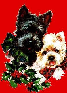 Vintage Christmas card from Dundee, Scotland with Scottish terriers / Scotty & Westie Tartan Christmas, Old Christmas, Old Fashioned Christmas, Christmas Scenes, Christmas Animals, Retro Christmas, Christmas Greetings, Xmas, Christmas Mantles