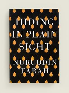 Hiding in Plain Sight, book cover design by Janet Hansen