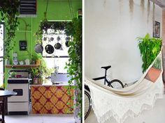 Plascon House Tour: It's A Jungle In there