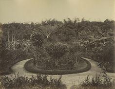 Le jardin public du Calvaire à Caracas. / The public gardens of the Calvario in Caracas.