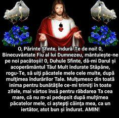 Christ, Interior, Indoor, Interiors
