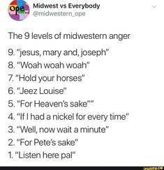 """Midwest vs Everybody """" The 9 levels of midwestern anger """"jesus, mary and,]oseph"""" """"Woah woah woah"""" """"Hold your horses"""" """"Jeez Louise"""" """"For Heaven's sake """"Ifl had a nickel for every time"""" """"Well, now wait a minute"""" """"For Stupid Funny, Haha Funny, Funny Cute, Dankest Memes, Funny Memes, Ohio Memes, Funny Animal Memes, Tumblr Funny, Popular Memes"""