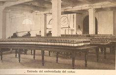 Embotellado del Brandy. / Bottling of the brandy.