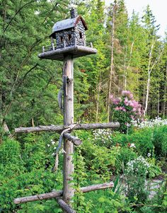 birdhouse with a trellis for a climbing rose.  Or just a place for the squirrels and birds to hang out!