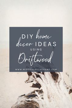 Driftwood is beautiful and a perfect way to bring an aspect of the ocean into your home. These DIY driftwood ideas will definitely inspire you. Driftwood Jewelry, Driftwood Ideas, Driftwood Crafts, Sustainable Gifts, Sustainable Living, Cheap Home Decor, Diy Home Decor, Diy Ideas, Decor Ideas