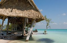 Holbox Island. Part of the ecological reserve of Yum Balam. Yucatan Peninsula. Mexico.