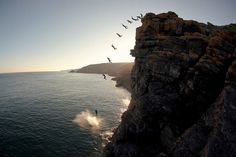 sometimes the only available transportation is a leap of faith