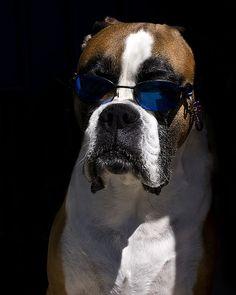 So bright I gotta wear shades