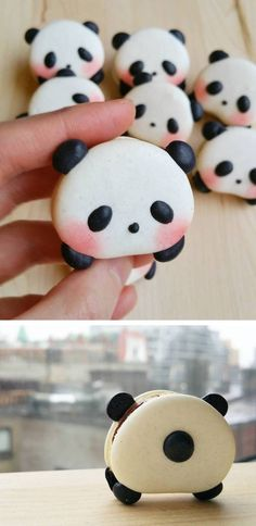 Animal macarons // panda cookies // cookie decorating // panda desserts