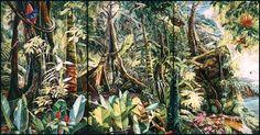 tropical rainforest costa rica - Поиск в Google