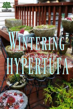 Gardening Container Wintering Hypertufa, Gives Me A Reason To Rearrang… - Hypertufa can withstand all the winter snows Concrete Crafts, Concrete Art, Concrete Garden, Concrete Projects, Garden Crafts, Garden Projects, Garden Ideas, Diy Crafts, Container Plants