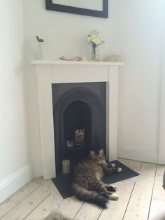Cast Iron With White Surround Cat Fireplace
