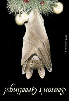 Bat Christmas card- when it's not Jane's first Christmas, this is so happening!