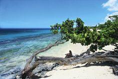 Playa Esmeralda Kuba im Kuba Reiseführer http://www.abenteurer.net/935-kuba-reisebericht/